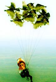 bowie turkey parachute
